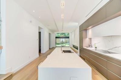 Urban Modern Sanctuary Quartz Countertops